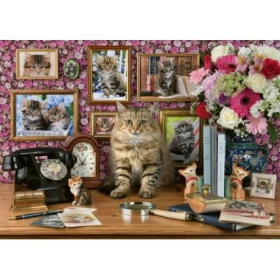 My Cute Kitty, 1000 κομμάτια, Ravensburger