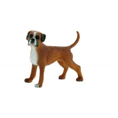 Σκύλος German Boxer