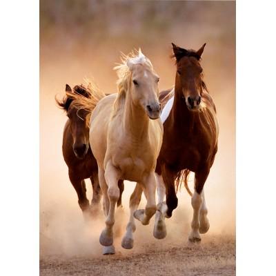 Πάζλ Άλογα που τρέχουν 1000 κομμάτια